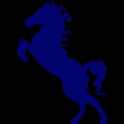 stallion-256